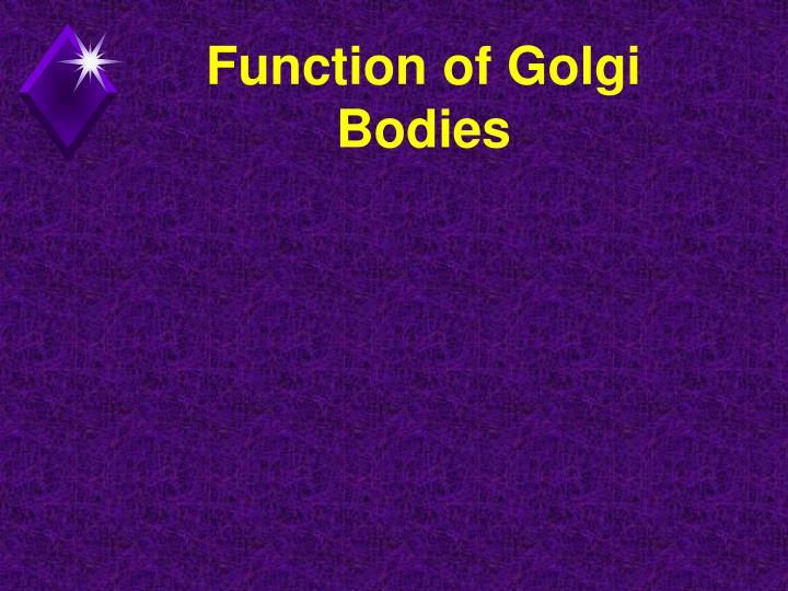 Function of Golgi Bodies