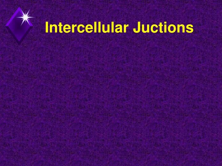 Intercellular Juctions