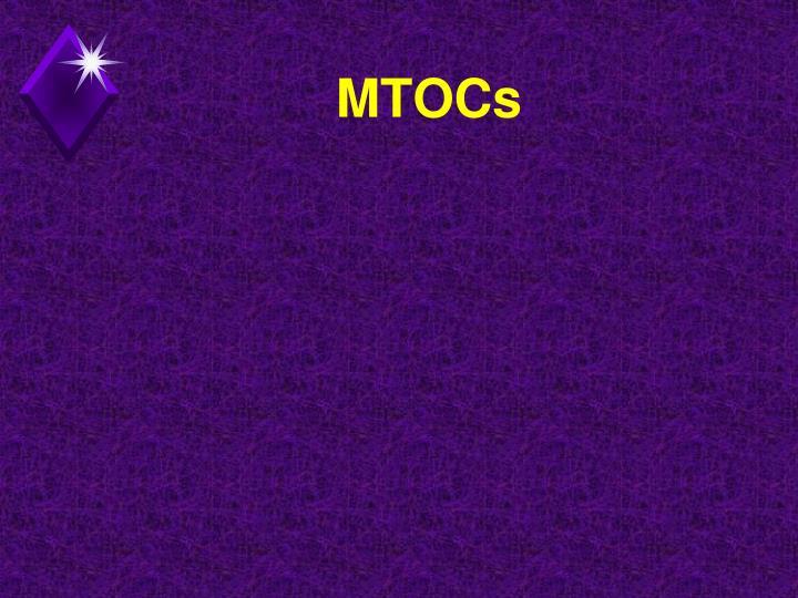 MTOCs