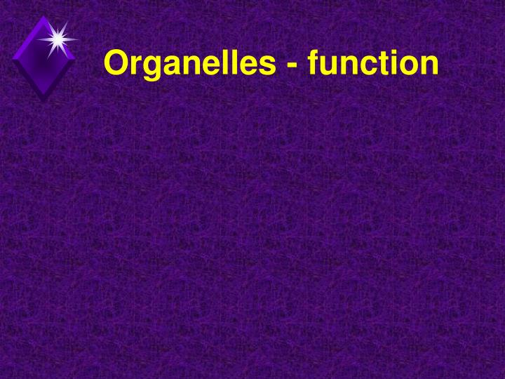 Organelles - function