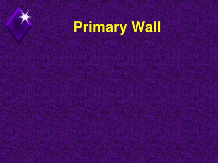Primary Wall
