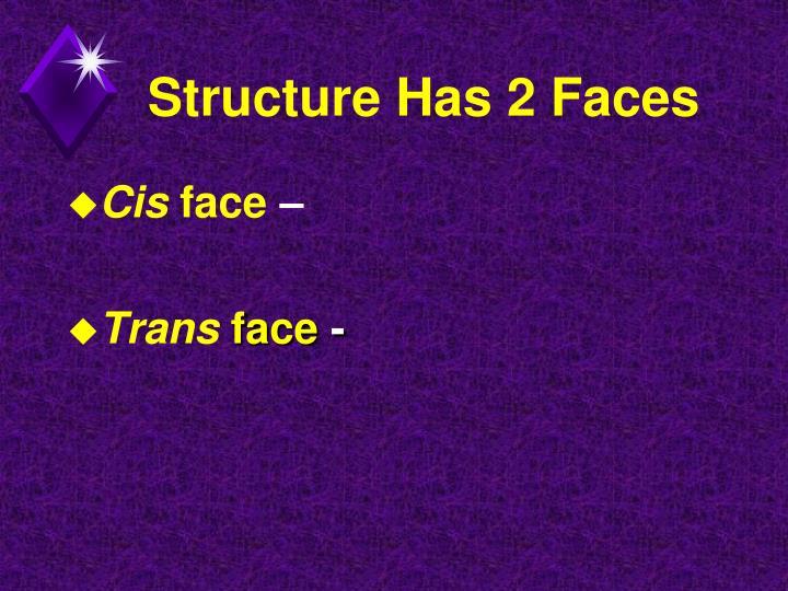 Structure Has 2 Faces