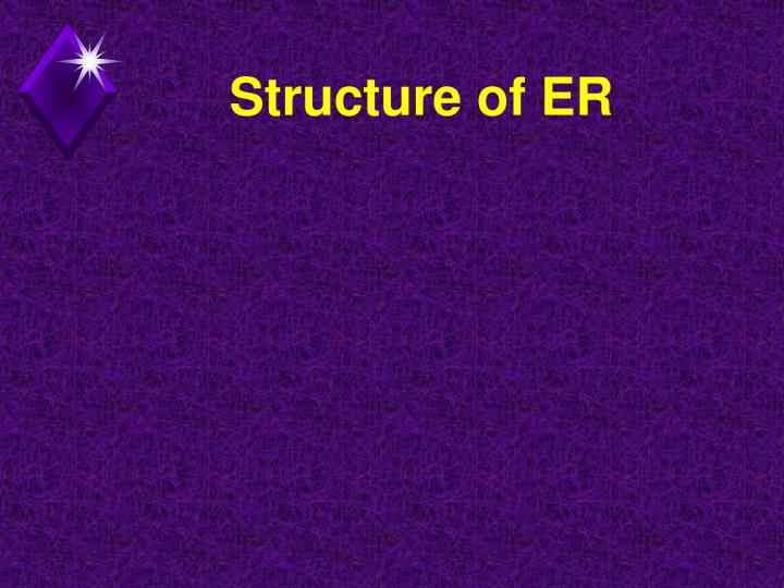Structure of ER