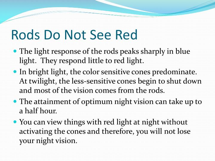 Rods Do Not See Red