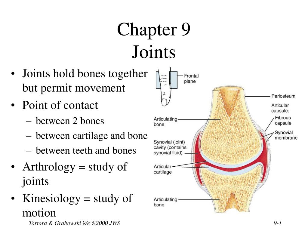 Ppt Chapter 9 Joints Powerpoint Presentation Id1703136