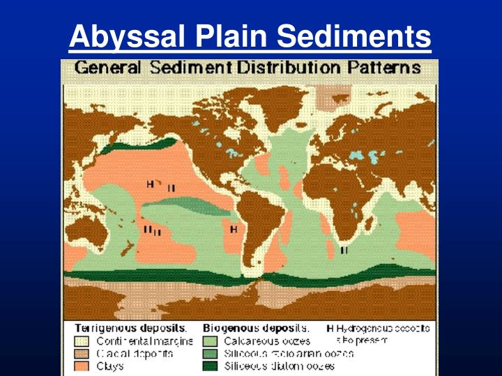 Abyssal Plain Sediments