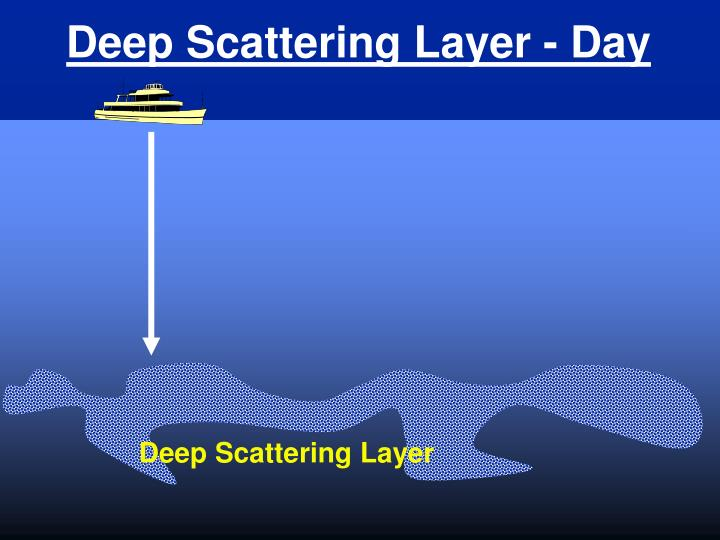 Deep Scattering Layer - Day