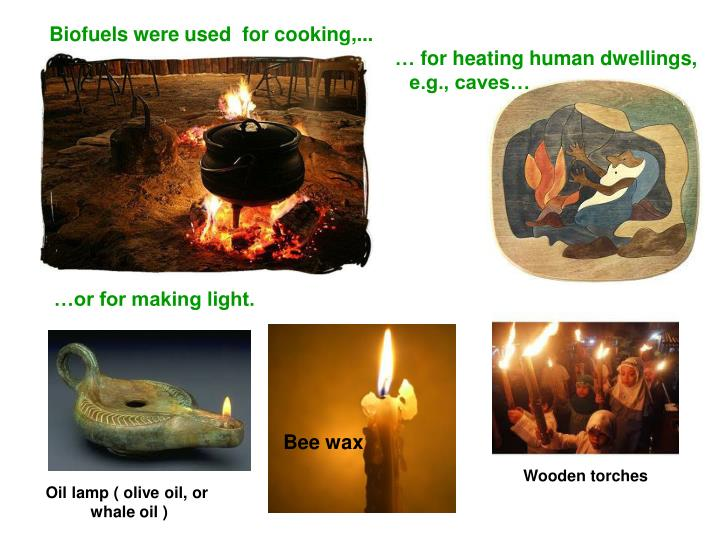 Biofuels were used  for cooking,...