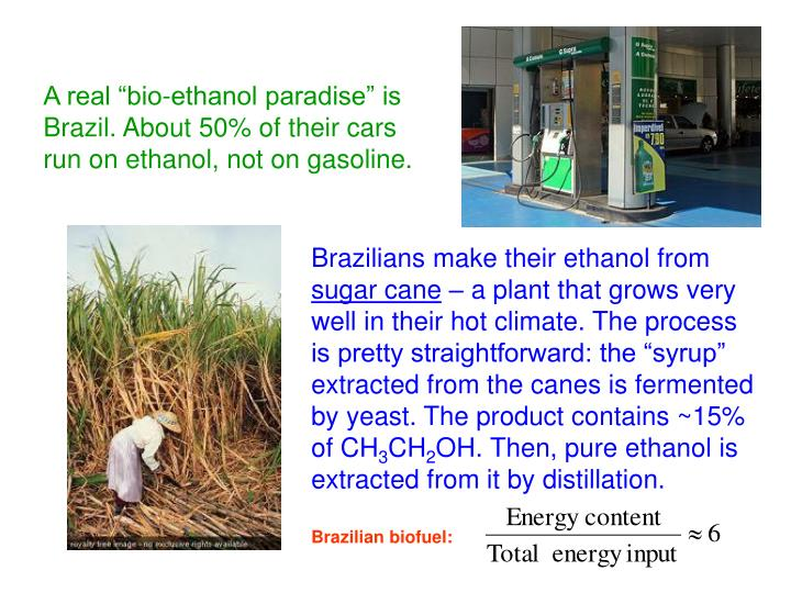 """A real """"bio-ethanol paradise"""" is"""