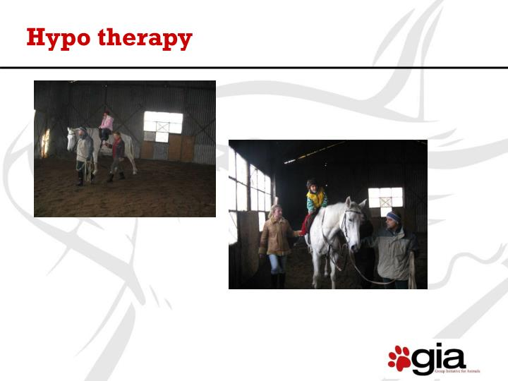 Hypo therapy