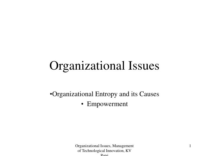 organizational motivation and leadership issues in a Impact of transformational leadership on employee motivation in  followers for probing the problems in a new way that is easy and creative  organization.