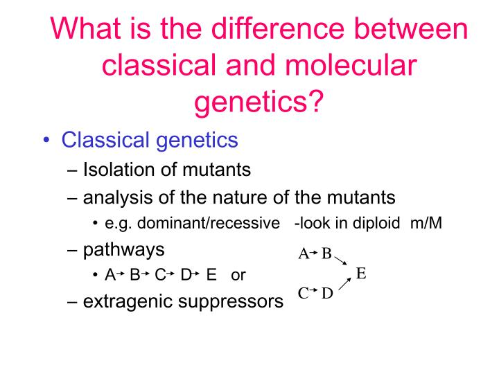 What is the difference between classical and molecular genetics?
