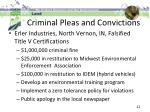 criminal pleas and convictions