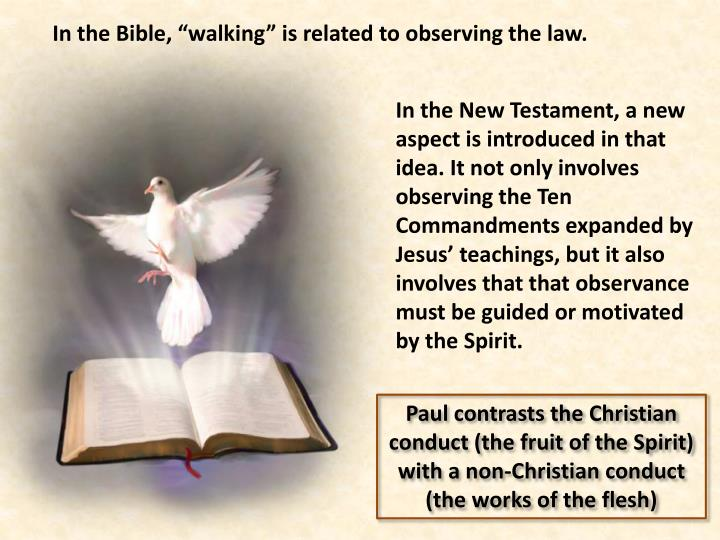 "In the Bible, ""walking"" is related to observing the law"