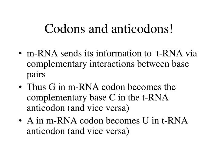 Codons and anticodons!
