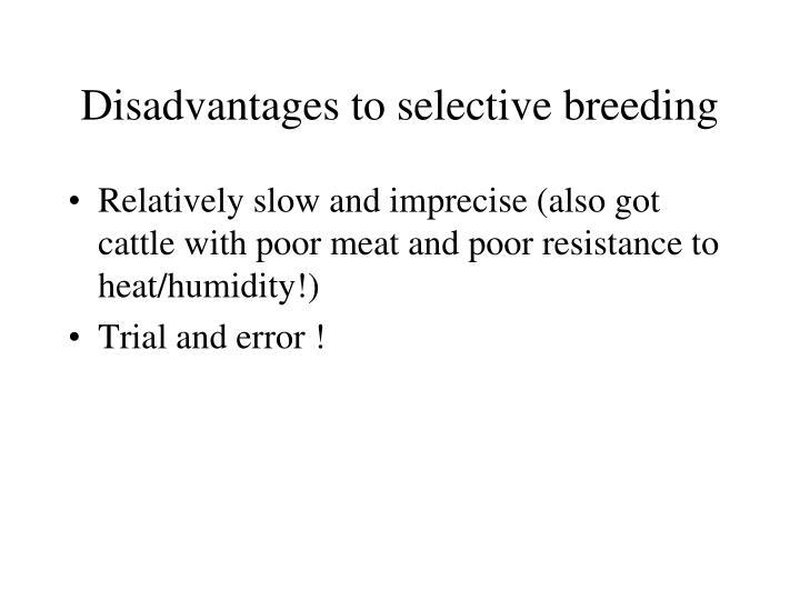 Disadvantages to selective breeding