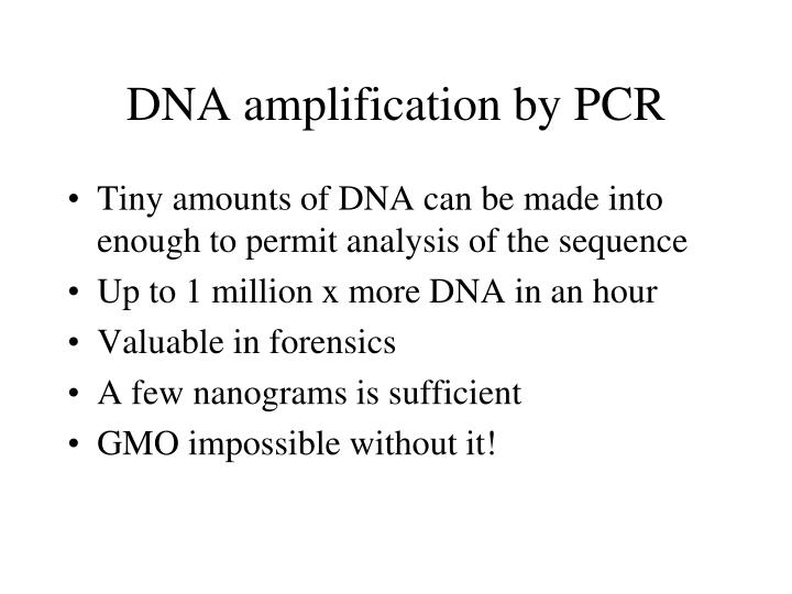 DNA amplification by PCR
