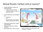 boreal forests carbon sink or source1