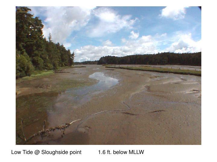 Low Tide @ Sloughside point           1.6 ft. below MLLW
