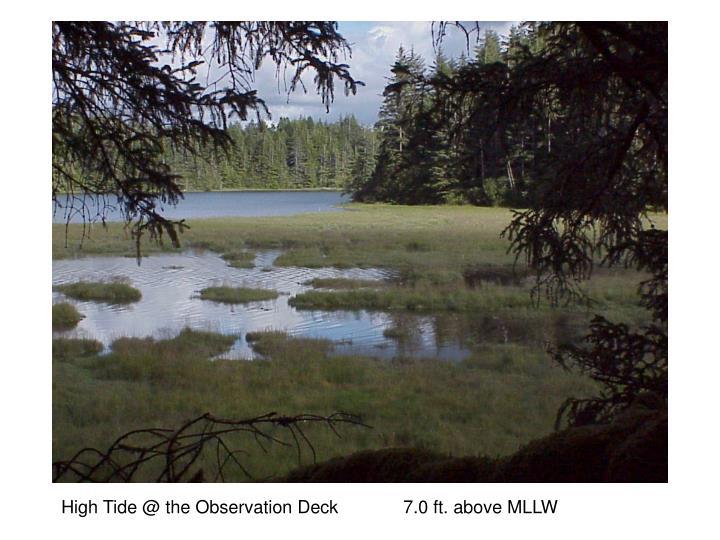 High Tide @ the Observation Deck             7.0 ft. above MLLW