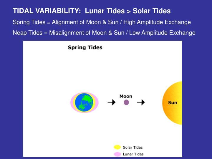 TIDAL VARIABILITY:  Lunar Tides > Solar Tides