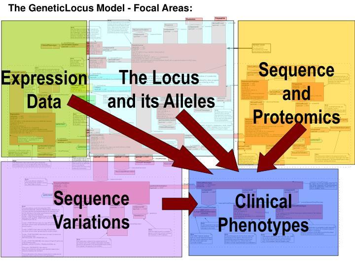 The GeneticLocus Model - Focal Areas: