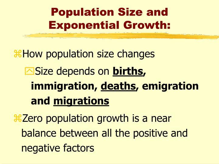 zero population growth is achieved when