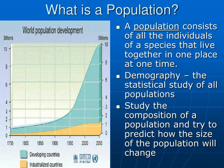 What is a population