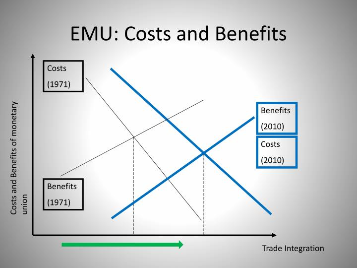 EMU: Costs and Benefits