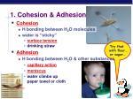 1 cohesion adhesion