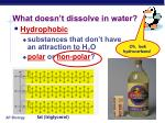 what doesn t dissolve in water