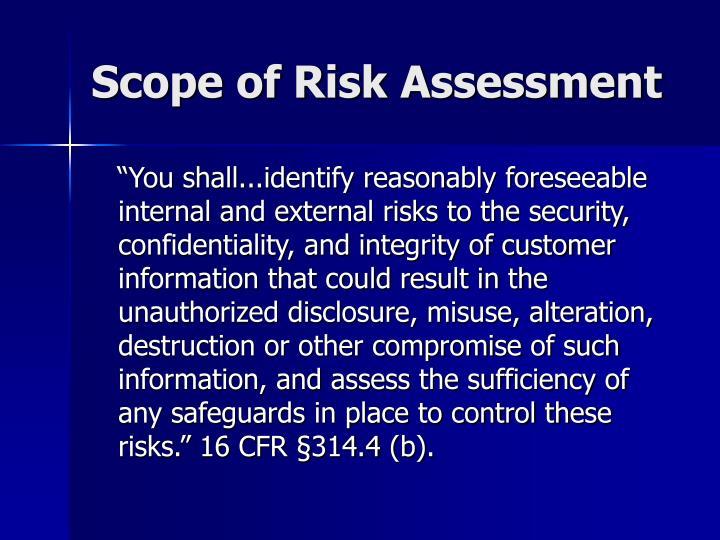 Scope of Risk Assessment