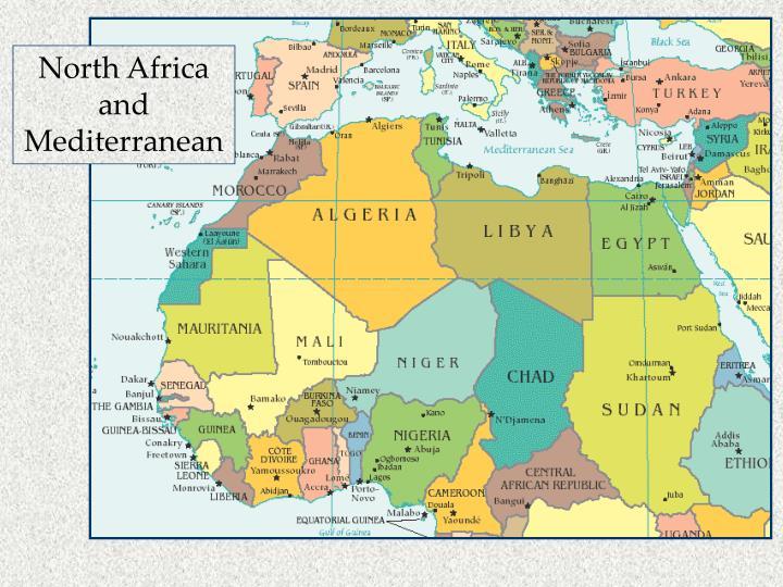 North Africa and Mediterranean