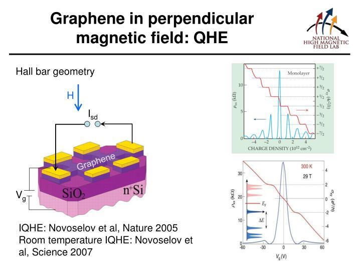 Graphene in perpendicular magnetic field: QHE