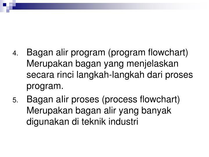 Bagan alir program (program flowchart)