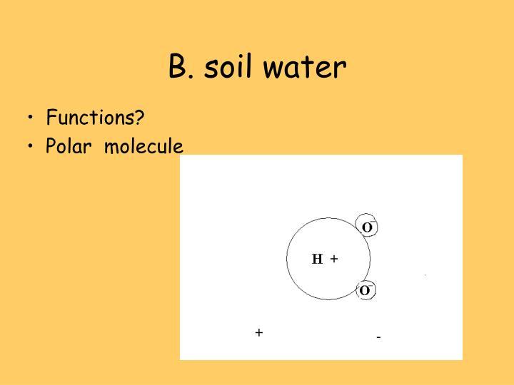 B. soil water