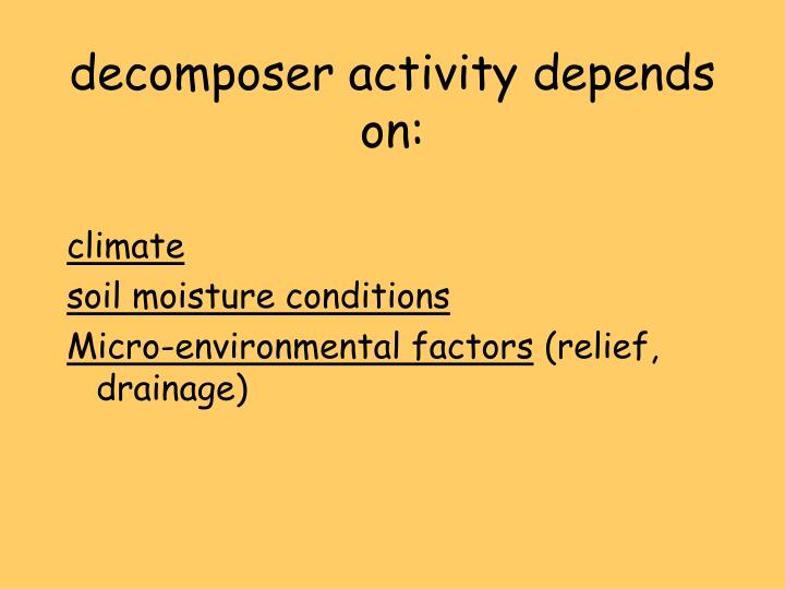 decomposer activity depends on: