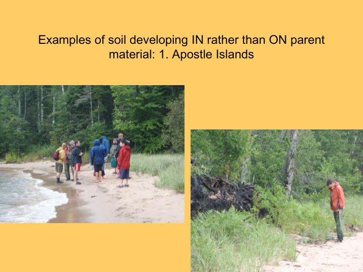 Examples of soil developing IN rather than ON parent material: 1. Apostle Islands