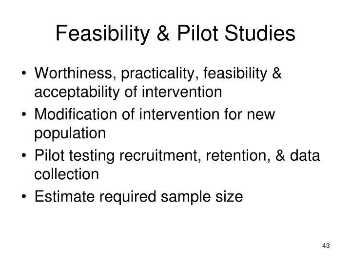 Feasibility & Pilot Studies