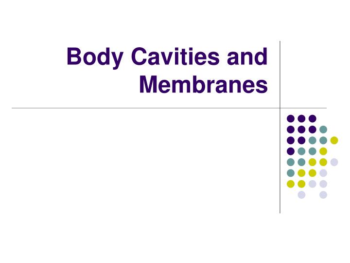 Body cavities and membranes
