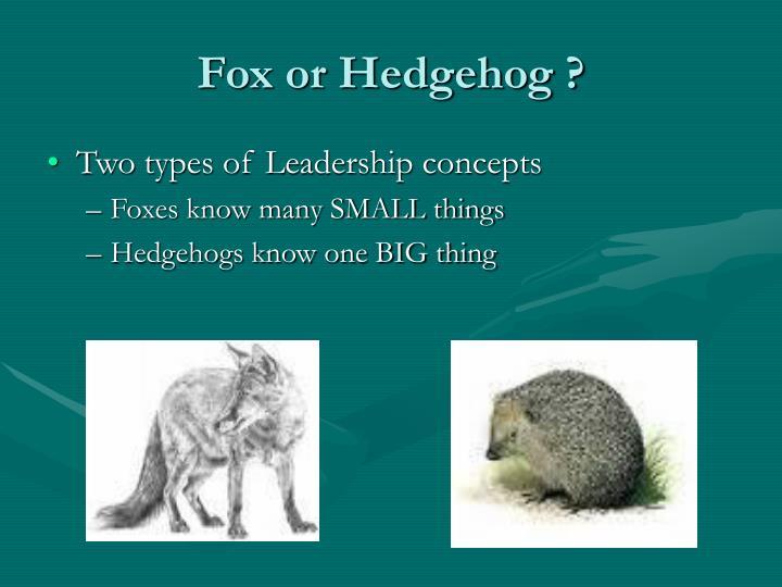 Fox or Hedgehog ?