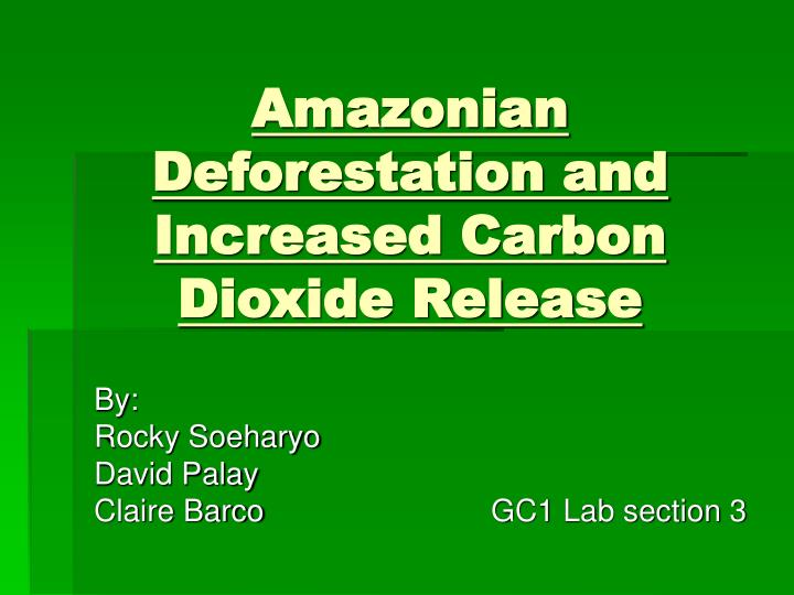 amazonian deforestation and increased carbon dioxide release n.