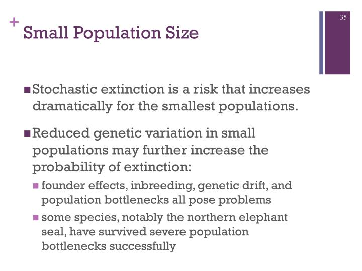 genetic drift extinction Note that selection can modify these outcomes by either facilitating or preventing fixation/extinction of alleles  genetic drift is the culprit, genetic diversity .