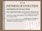 17 4 patterns of evolution