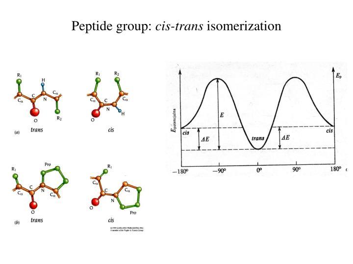 Peptide group: