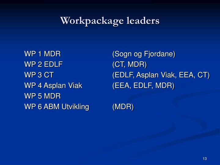 Workpackage leaders