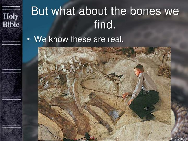 But what about the bones we find.