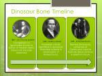 dinosaur bone timeline