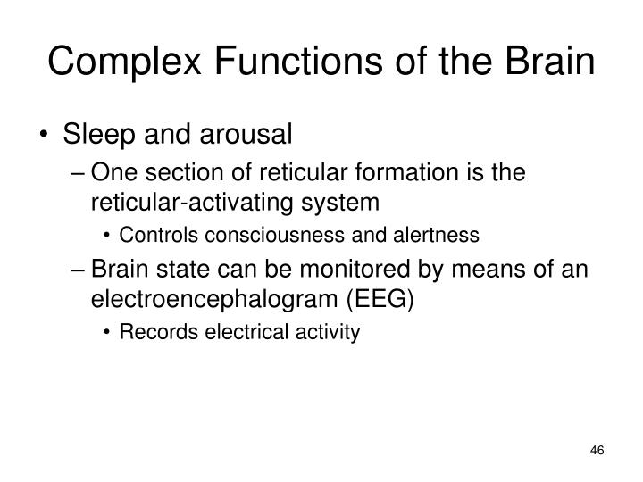 Complex Functions of the Brain