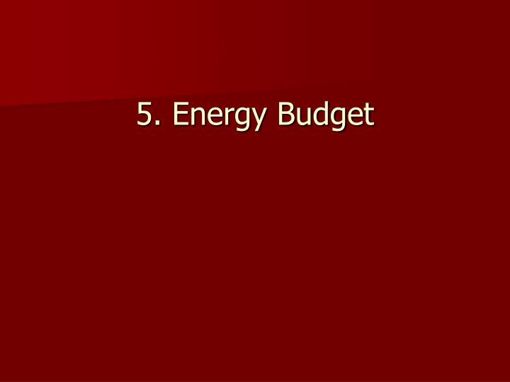 5. Energy Budget